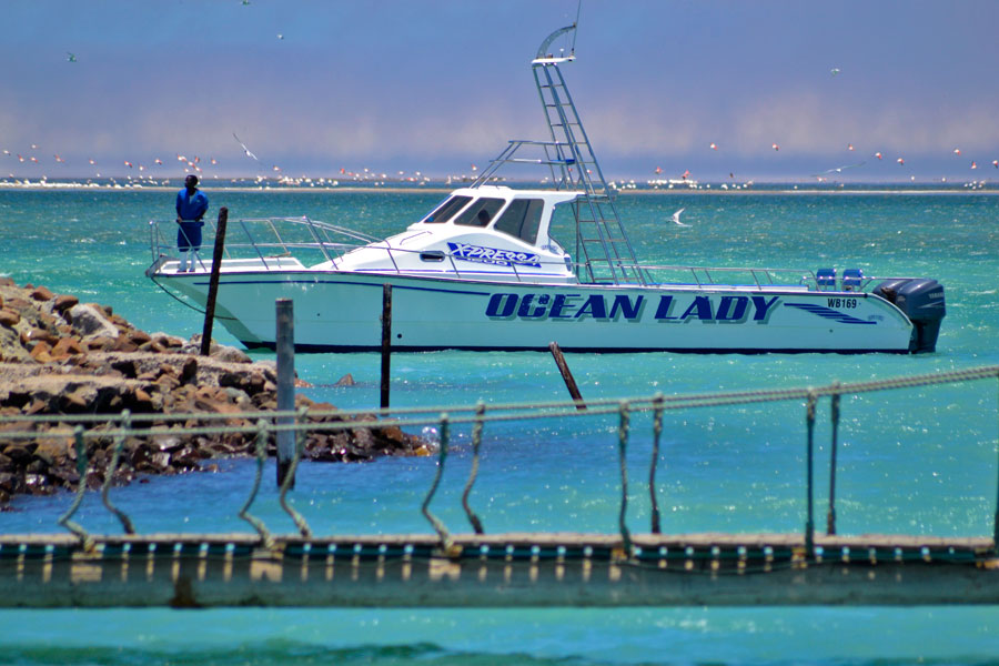 Ocean Lady - Walvis Bay Waterfront